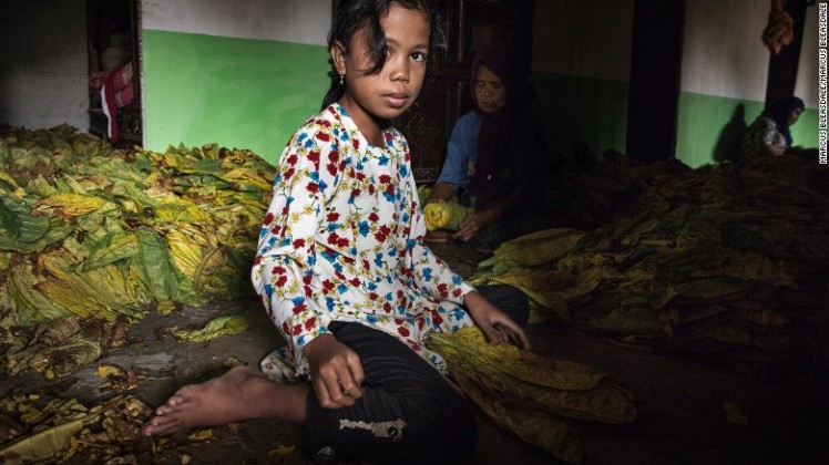 160525111440-hrw-indonesia-tobacco-children-1-exlarge-169